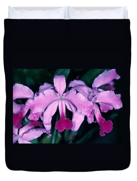 Orchid 6 Duvet Cover