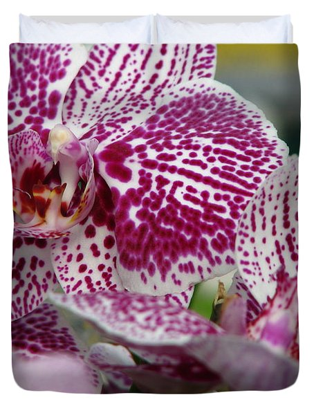Orchid Art Duvet Cover by Greg Patzer