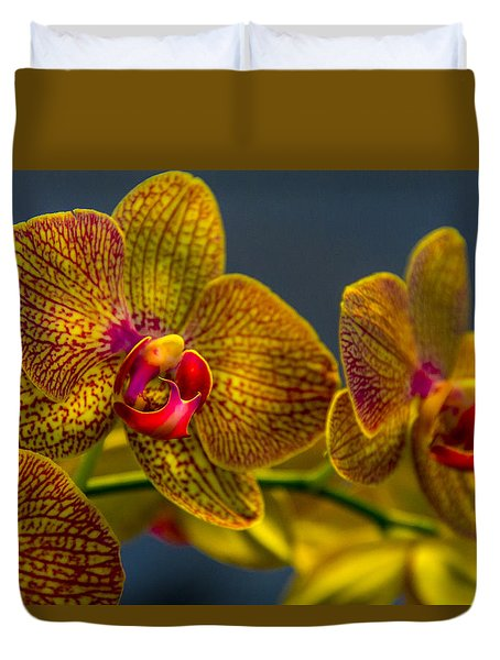 Orchid Color Duvet Cover