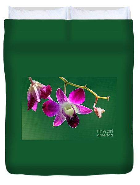 Orchid Flower Duvet Cover by Karen Adams