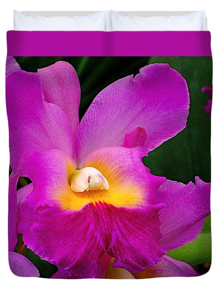Orchid Variations 1 Duvet Cover by Rona Black
