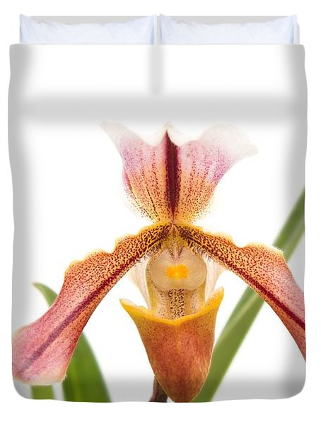 Orchid - Will The Slipper Fit  Duvet Cover by Mike Savad