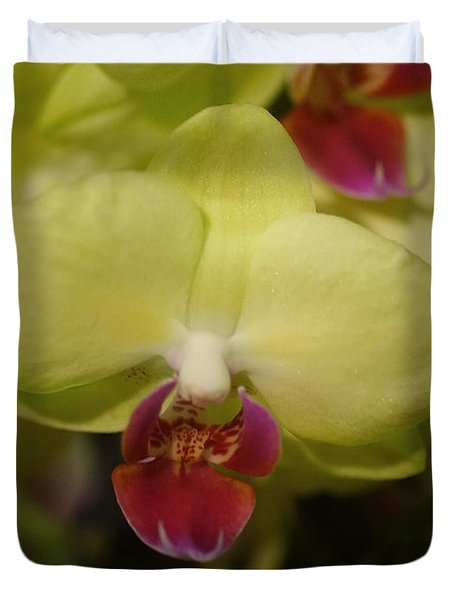 Orchids 181 Duvet Cover by Rudi Prott