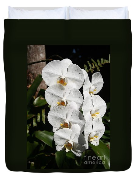 Orchids Anna Duvet Cover by The Art of Alice Terrill