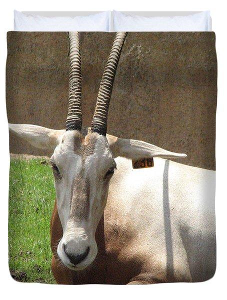 Oryx Duvet Cover by DejaVu Designs