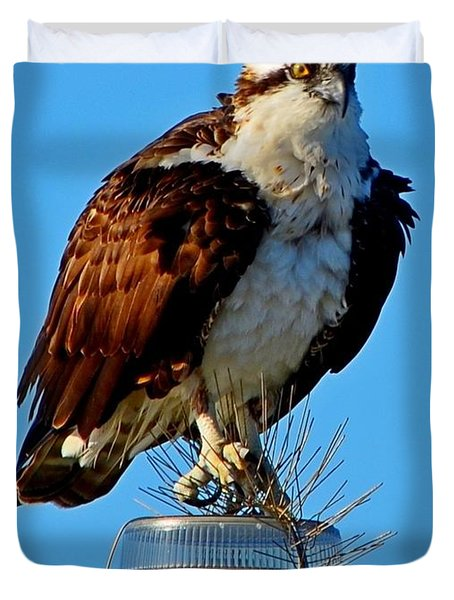 Duvet Cover featuring the photograph Osprey Close-up On Water Navigation Aid by Jeff at JSJ Photography