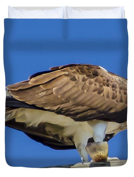 Osprey Eating Lunch Duvet Cover by Dale Powell
