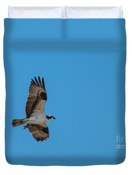 Osprey Flying Home With Dinner Duvet Cover by Robert Bales