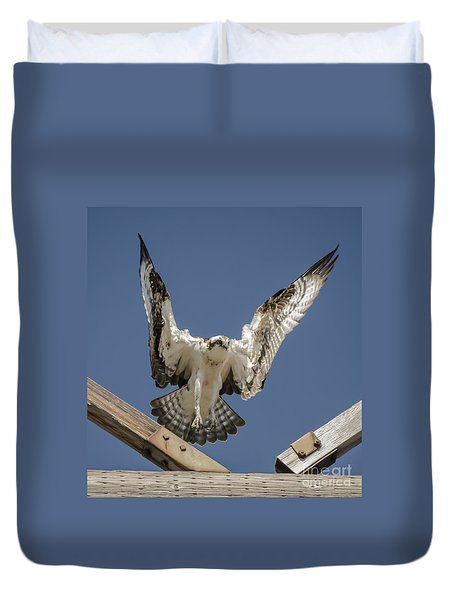 Osprey Landing Duvet Cover by Dale Powell