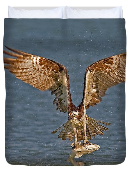 Osprey Morning Catch Duvet Cover