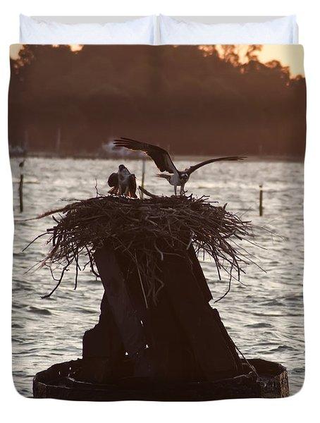 Osprey Nest - Piney Point Maryland Duvet Cover