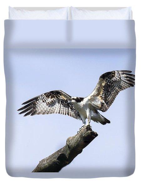Osprey Pride  Duvet Cover by David Lester