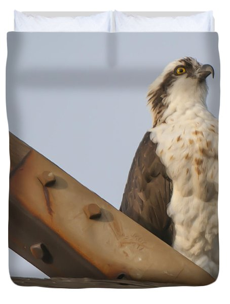 Osprey -seahawk Duvet Cover by Dale Powell
