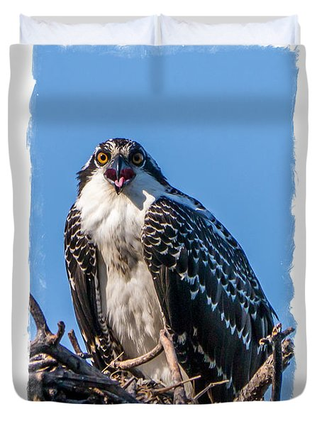Osprey Surprise Party Card Duvet Cover by Edward Fielding