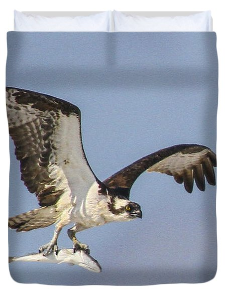 Osprey With Dinner Duvet Cover