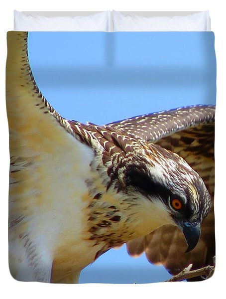 Duvet Cover featuring the photograph Osprey Youth by Dianne Cowen