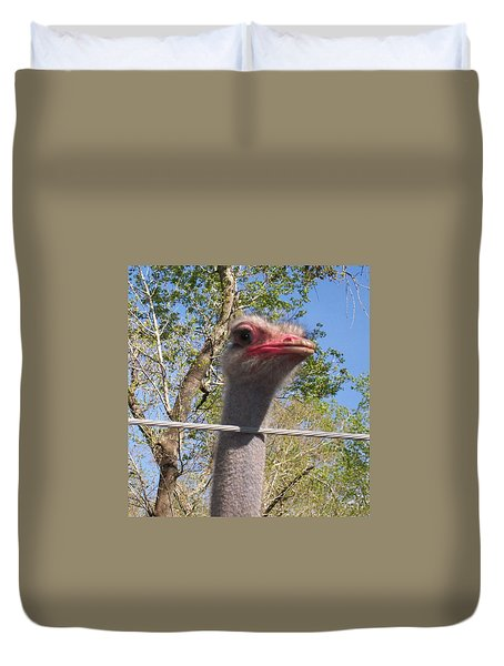 Duvet Cover featuring the photograph Ostrich Male Close Up by Belinda Lee