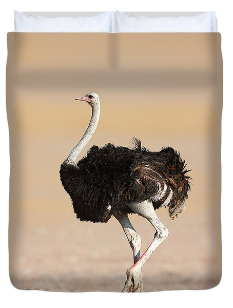 Ostrich Duvet Cover by Johan Swanepoel