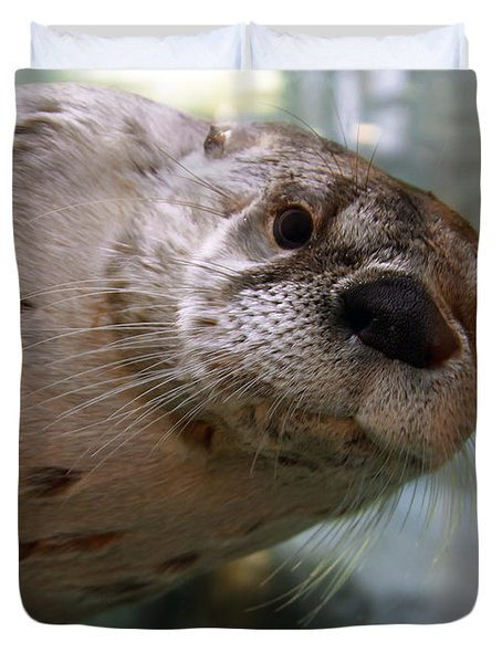 Otter Be Lookin' At You Kid Duvet Cover