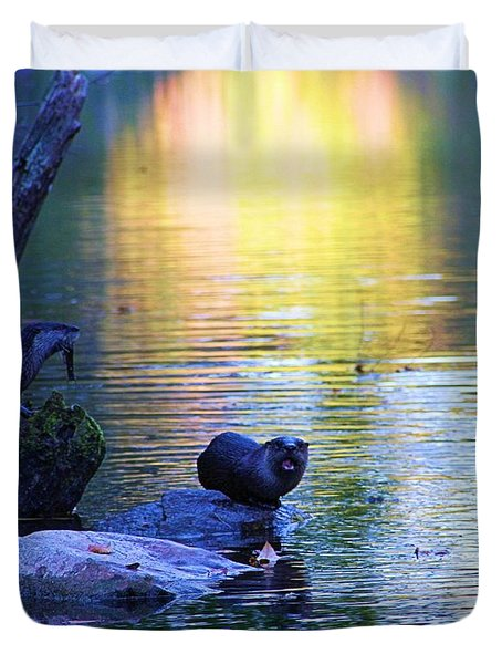 Otter Family Duvet Cover by Dan Sproul