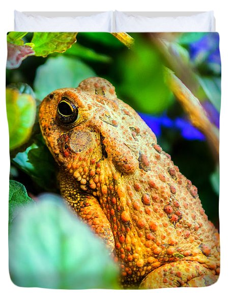 Our Backyard Visitor Duvet Cover by Jon Woodhams