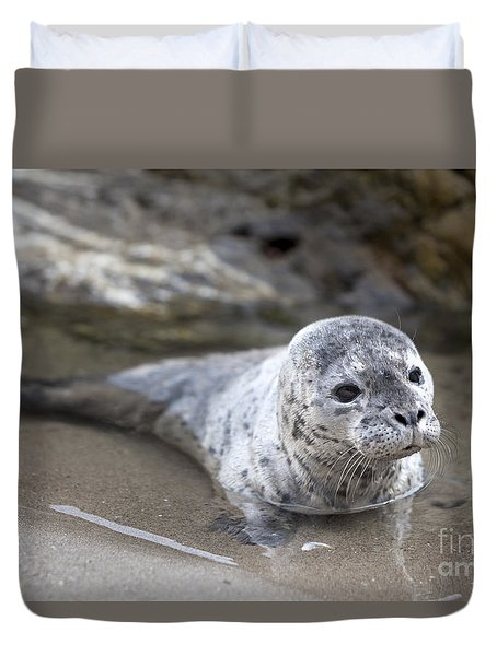 Out For A Swim Duvet Cover by David Millenheft