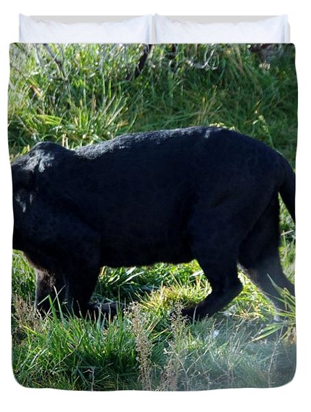 Out Of Africa  Black Panther Duvet Cover