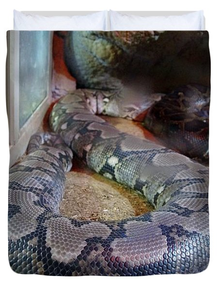 Out Of Africa  Black Snake Duvet Cover