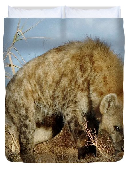 Out Of Africa Hyena 1 Duvet Cover