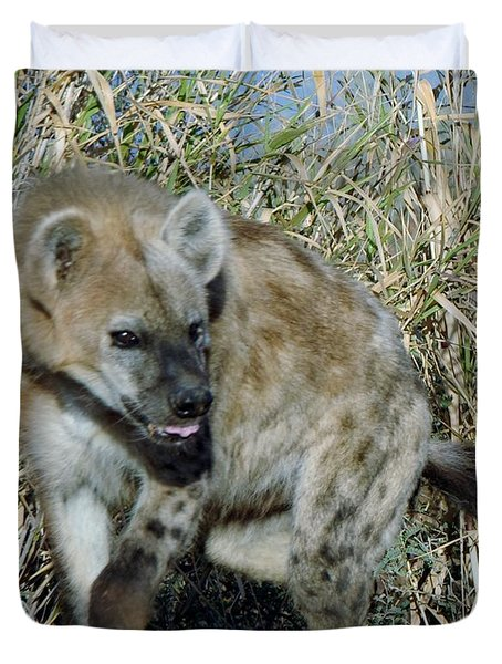 Out Of Africa  Hyena 2 Duvet Cover