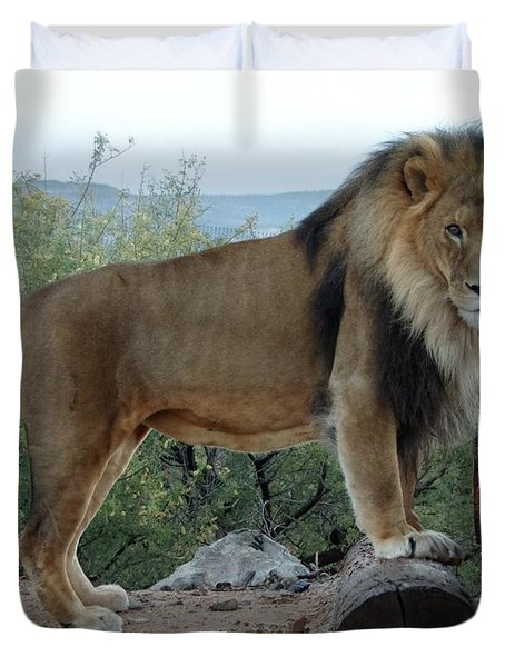 Out Of Africa  Lion 1 Duvet Cover