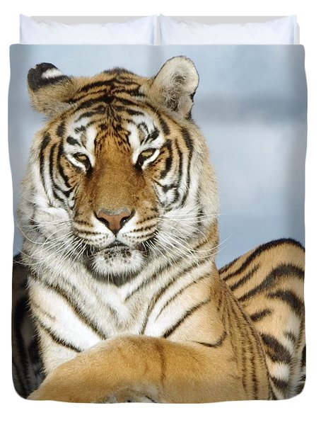 Out Of Africa Tiger 3 Duvet Cover