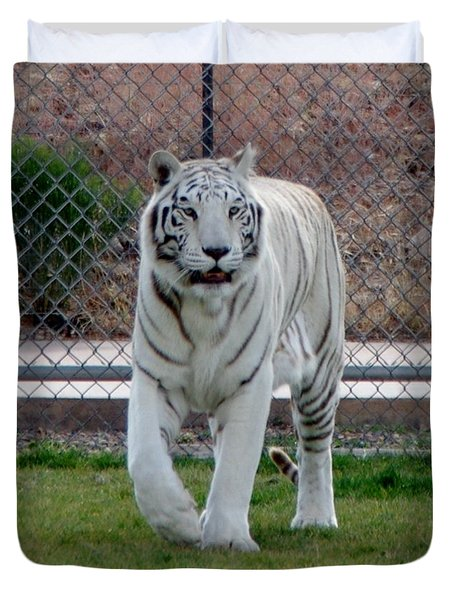 Out Of Africa White Tiger Duvet Cover