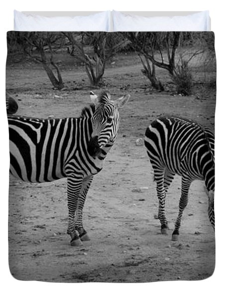 Out Of Africa  Zebras Duvet Cover