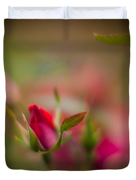 Out Of The Mist Duvet Cover by Mike Reid