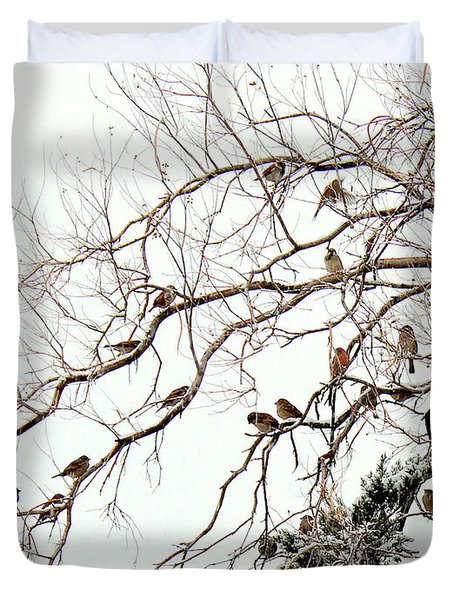 Duvet Cover featuring the photograph Out On A Limb First Snow by Barbara Chichester