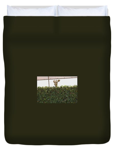 Over The Hedge Duvet Cover
