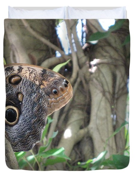 Owl Butterfly In Hiding Duvet Cover