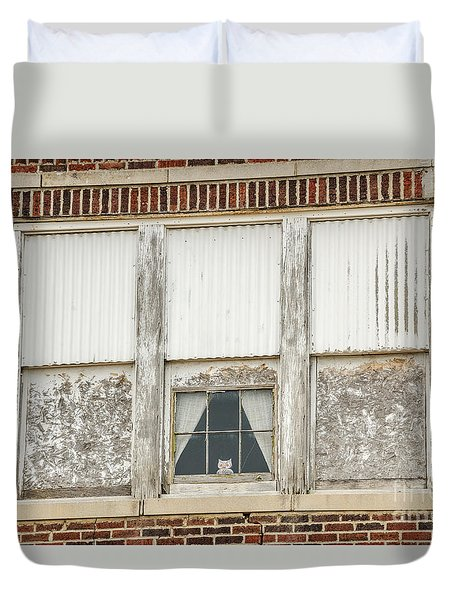 Owl In The Window Duvet Cover by Sue Smith
