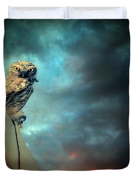 Owl Duvet Cover by Taylan Apukovska