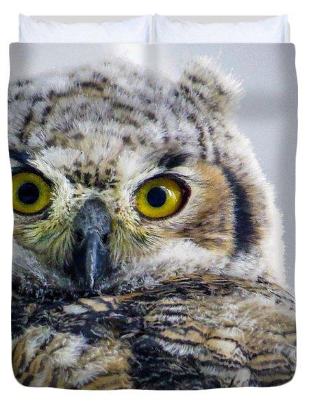 Owlet Close-up Duvet Cover