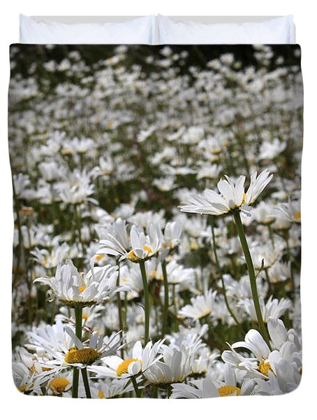 Ox Eye Daisies Duvet Cover
