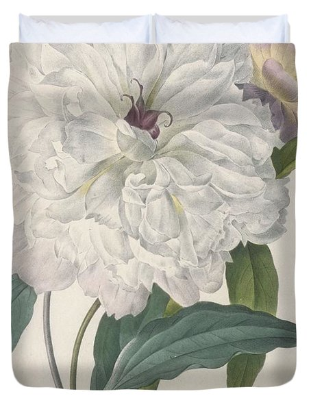 Paeonia Flagrans Peony Duvet Cover