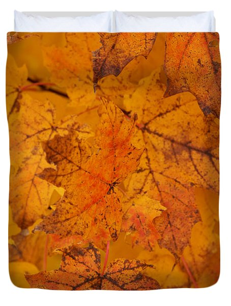 Painted Leaves Of Autumn Duvet Cover by Linda Shafer