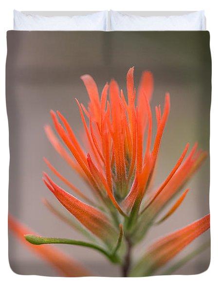 Painterly Paintbrush Duvet Cover
