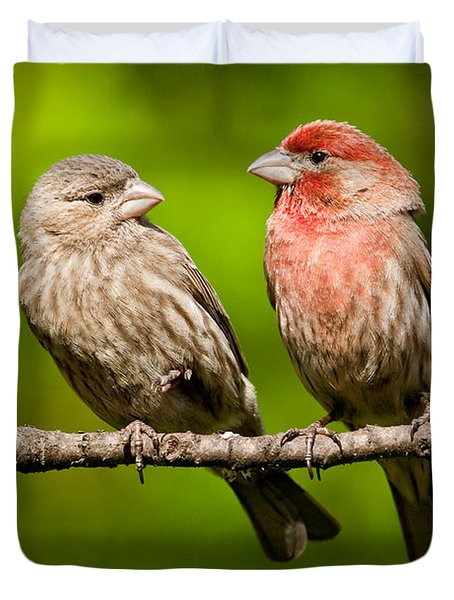 Pair Of House Finches In A Tree Duvet Cover