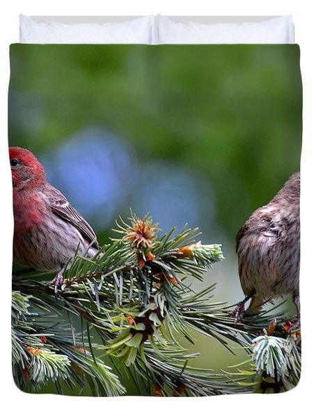 Pair Of Purple Finches Duvet Cover