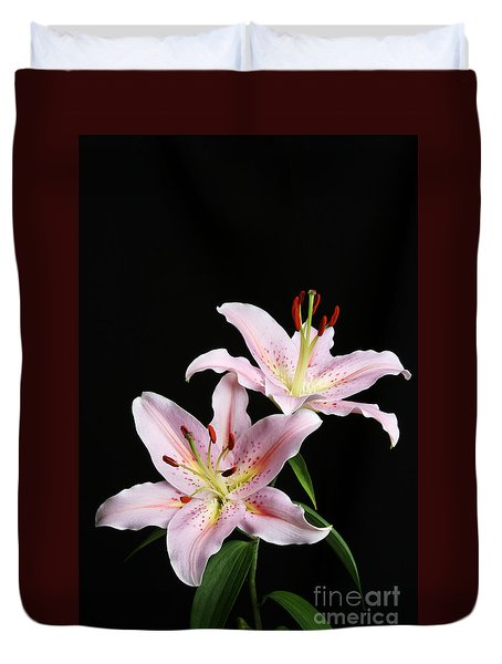Pale Pink Asiatic Lilies Duvet Cover by Judy Whitton