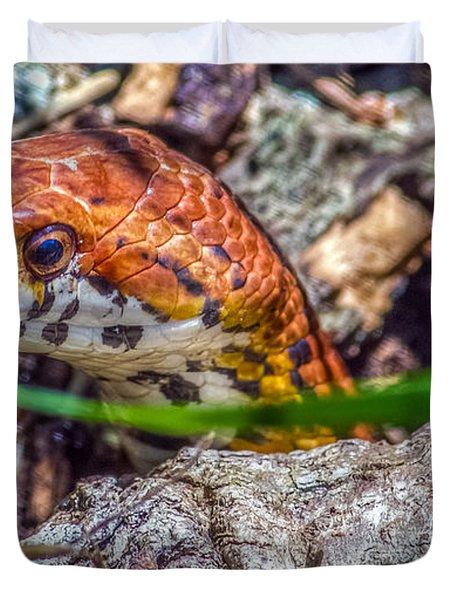Pantherophis Guttatus Duvet Cover
