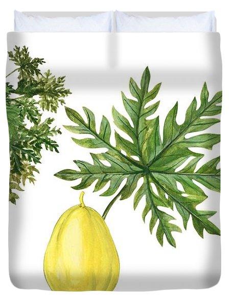 Papaya Duvet Cover by Anonymous